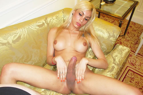 Newest sites tranny